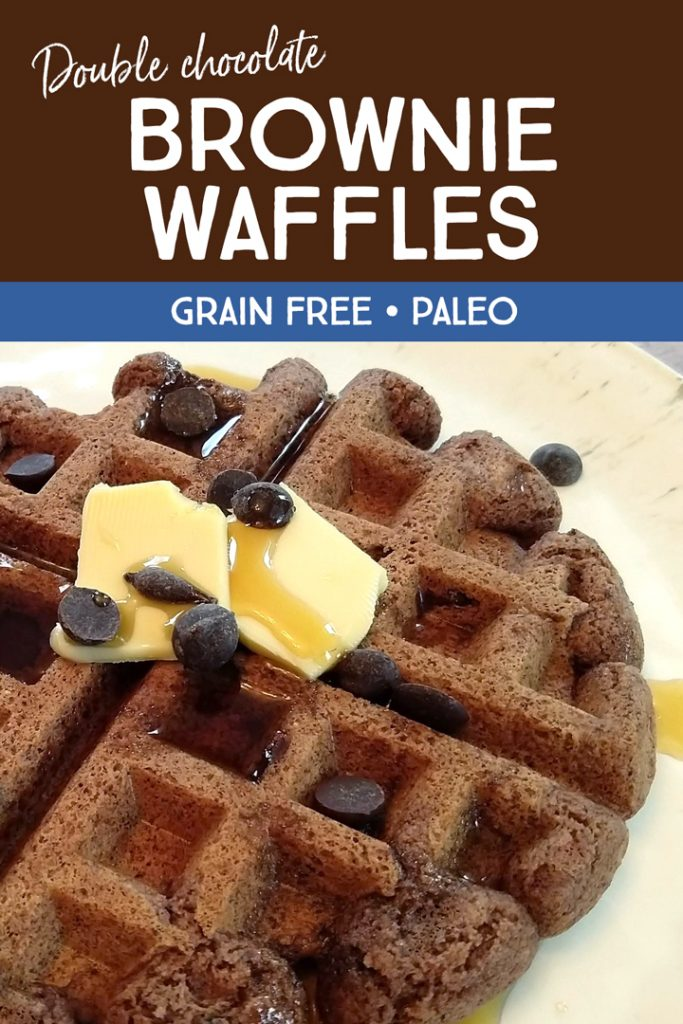 Chocolate Brownie Waffle Recipe-Grain Free