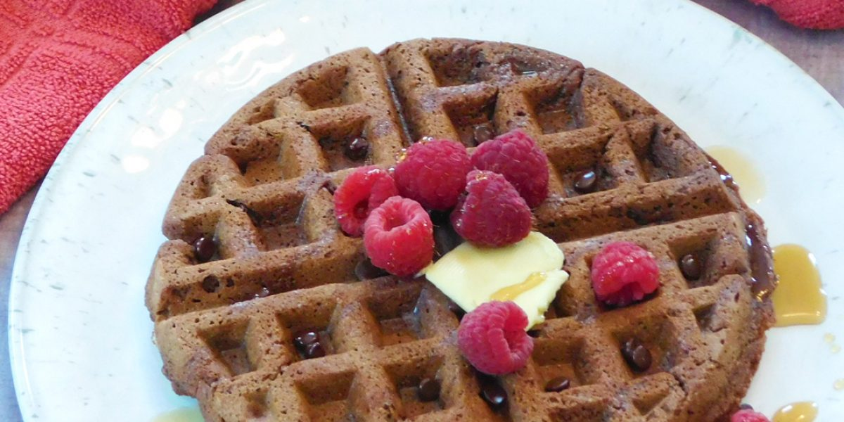 Chocolate Brownie Waffles {Grain Free • Dairy Free}