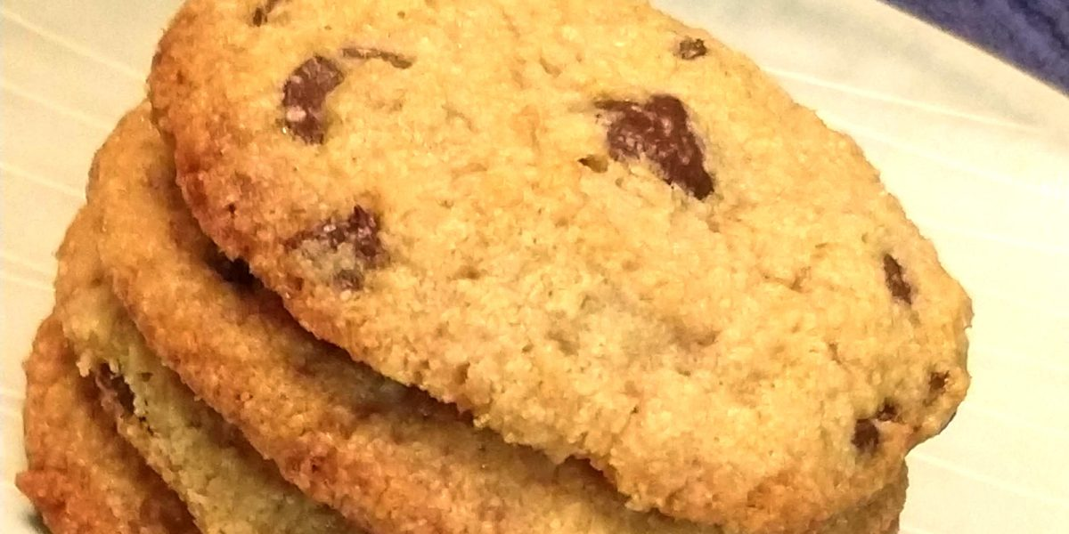 Chewy Chocolate Chip Cookies {low carb, keto, gluten free}
