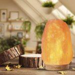 Himalayan Salt lamp gift